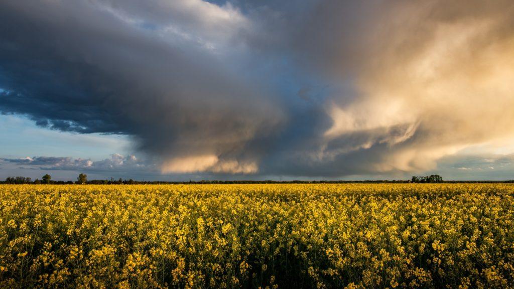 photo début d'orage