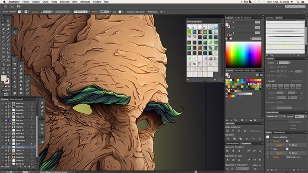 suivre formation Adobe Illustrator