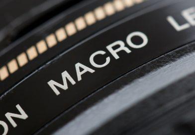 Macrophotographie – Notre guide pour bien débuter